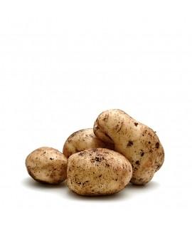 Cartofi de grădină