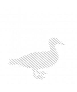 Caserolă ouă de raţă